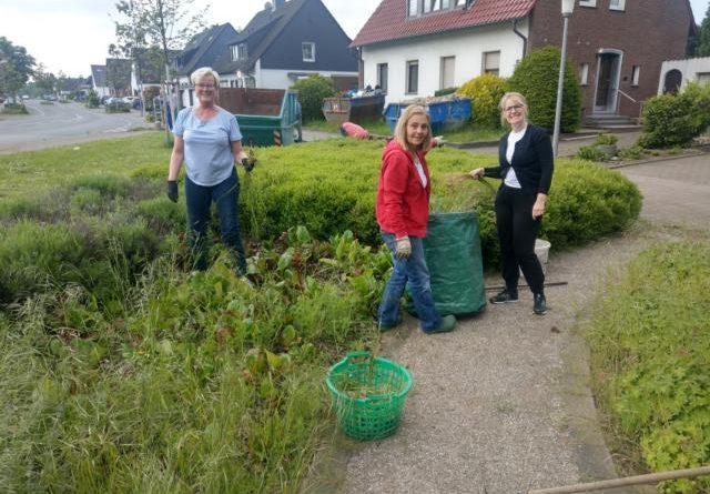 Online-Gartenlehrgang mit unserem Gartenberater Philippe Dahlmann vom Verband Wohneigentum NRW